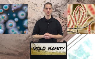 MOLD SAFETY