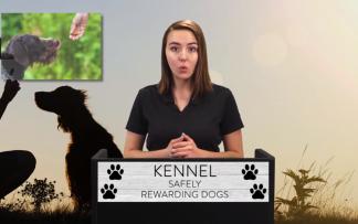 KENNEL: SAFELY REWARDING DOGS